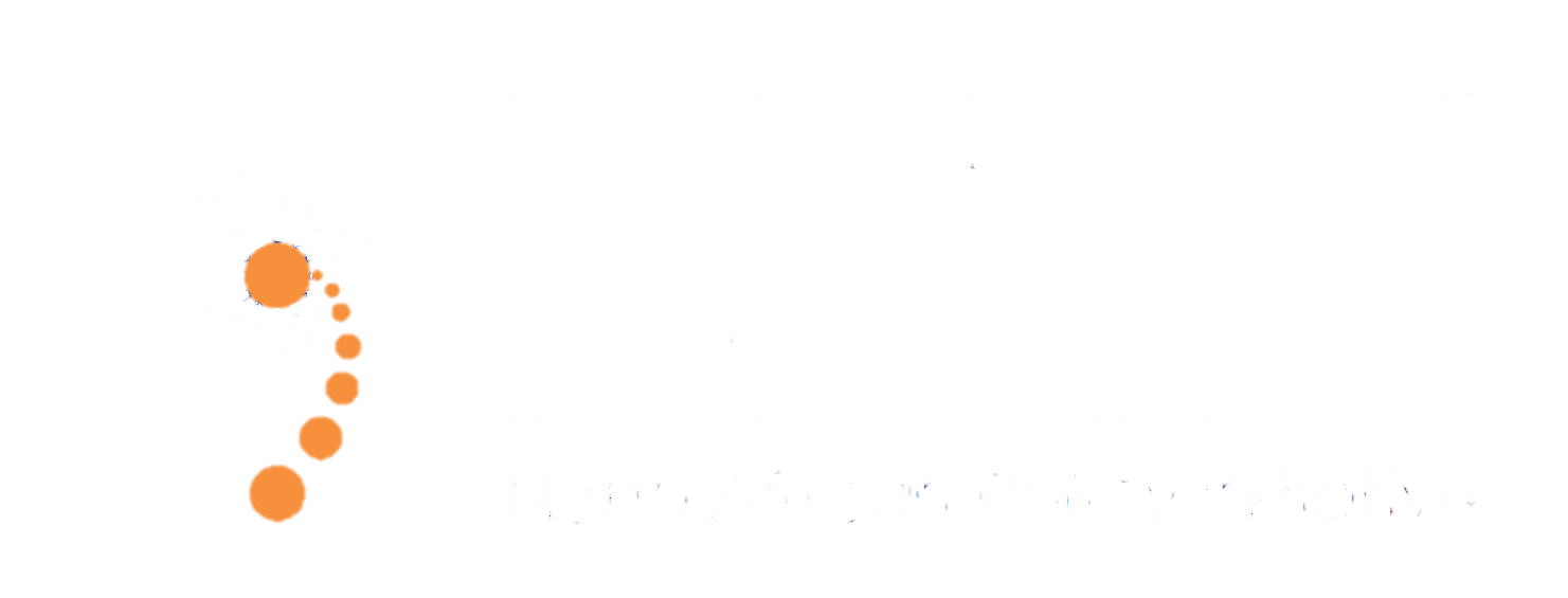 NAPI - The North African Policy Initiative